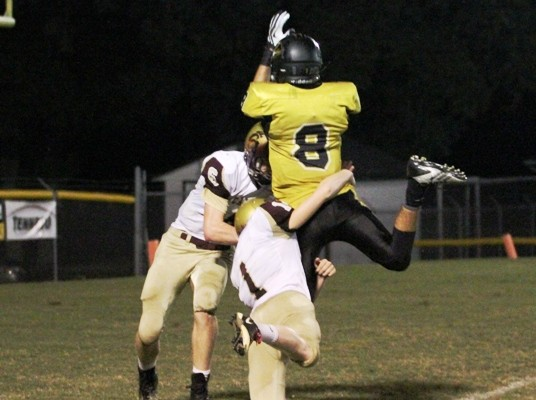 Aaron Patterson went up for an amazing catch in the Tigers' game vs. Cannon County.