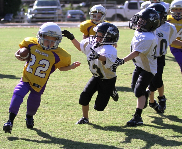 Seth Fuson going after a Bulldog in the Tigers' victory at York Saturday.