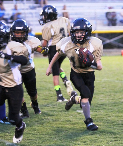 Issac Knowles ran for 12 yards against Crossville Saturday.