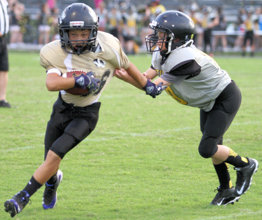 Desomnd Nokes ran for a touchdown in Saturday's contest at Upperman.