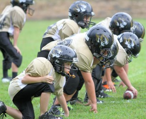 The Tiger Offensive Line